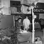 Exposition du Club Natural à l'Escale, au printemps 1976. (SHHY, fonds Jeannot Petit)